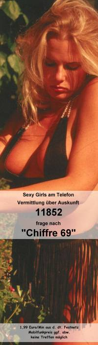 Telefonsex über 118 Nummer